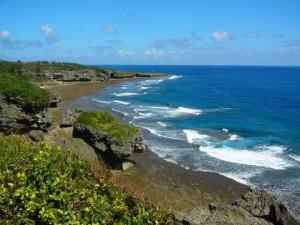 沖縄の大学で学びました。